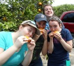 (L-R) Kate Lecci, Elizabeth Faber, Mary Ames and Meghan Roach enjoying a fresh cut Florida orange.